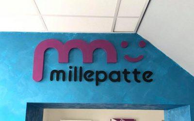 Agence Millepatte Saint Martin la Plaine (42)